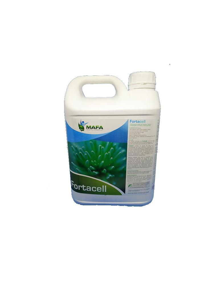 FORTACELL JERRICAN 5L (ECO)